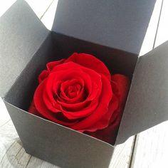 Faire envoyer des fleurs pas cher l 39 atelier des fleurs for Fleurs envoyer pas cher