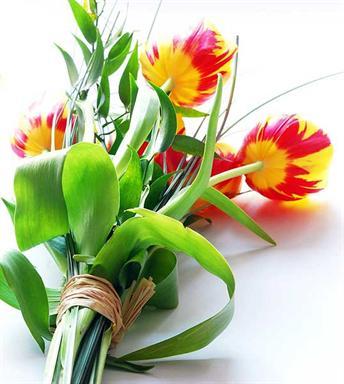 acheter des fleurs l 39 atelier des fleurs. Black Bedroom Furniture Sets. Home Design Ideas