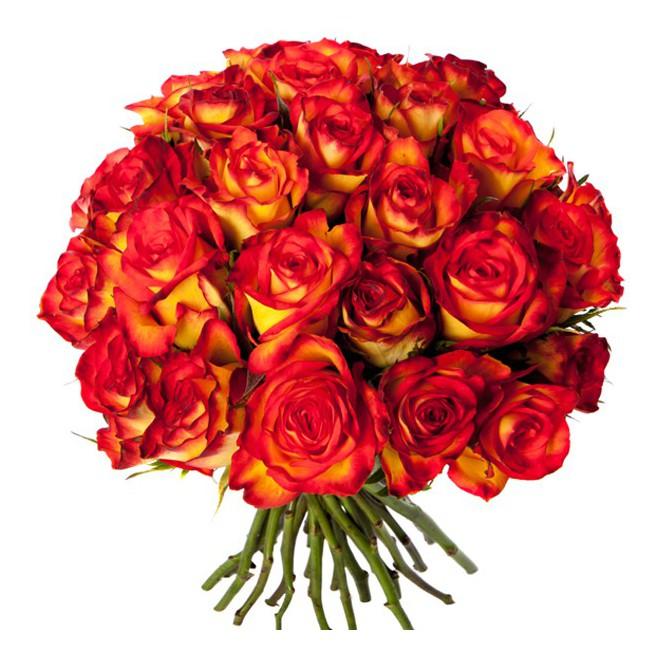 Envoyer un bouquet de fleurs pas cher l 39 atelier des fleurs for Envoyer des roses