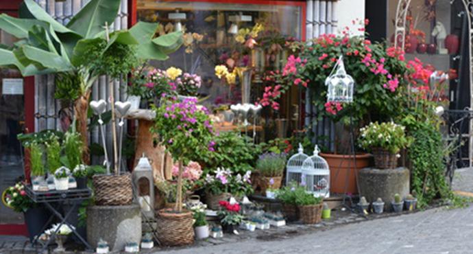 envoyer des fleurs pas cher livraison gratuite l 39 atelier des fleurs. Black Bedroom Furniture Sets. Home Design Ideas