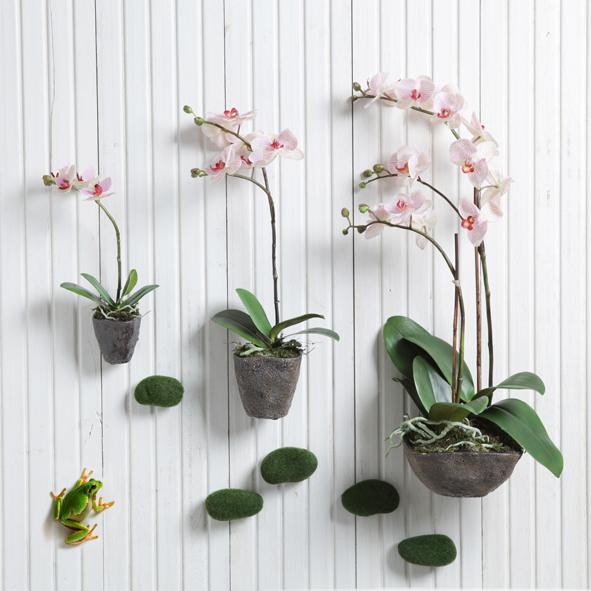 comment faire refleurir des orchid es l 39 atelier des fleurs. Black Bedroom Furniture Sets. Home Design Ideas