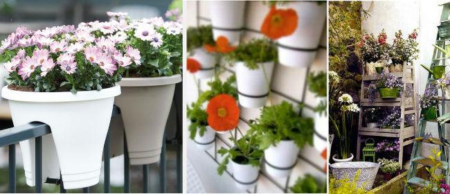 amenagement balcon plantes l 39 atelier des fleurs. Black Bedroom Furniture Sets. Home Design Ideas