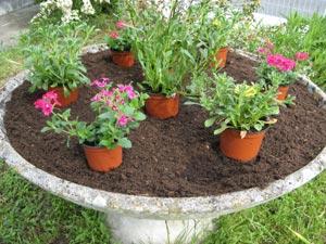vasques pour fleurs jardin l 39 atelier des fleurs. Black Bedroom Furniture Sets. Home Design Ideas