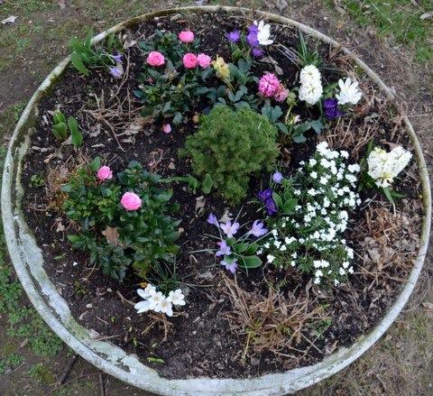 Vasque jardin pour fleurs l 39 atelier des fleurs for Jardiniere vasque jardin