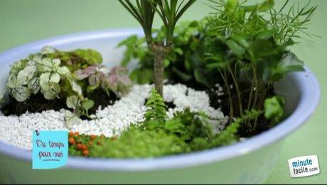 Jardin miniature d int rieur l 39 atelier des fleurs - Mini jardin japonais d interieur ...