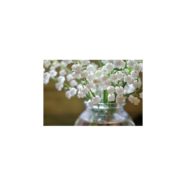 une prix fleuriste ici l 39 atelier des fleurs. Black Bedroom Furniture Sets. Home Design Ideas
