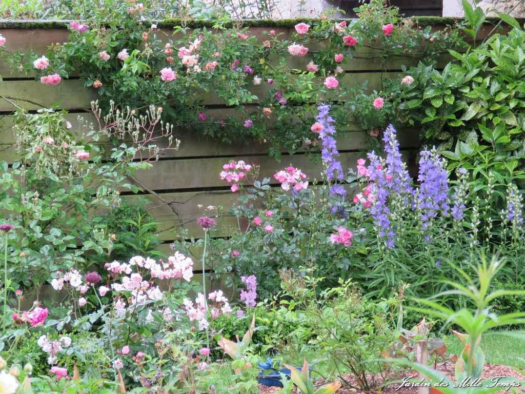Une parterre de fleurs vivaces ici l 39 atelier des fleurs - Massif de fleurs vivaces ...