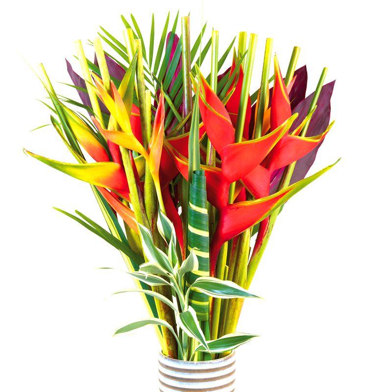 une image bouquet de fleurs exotiques ici l 39 atelier des. Black Bedroom Furniture Sets. Home Design Ideas