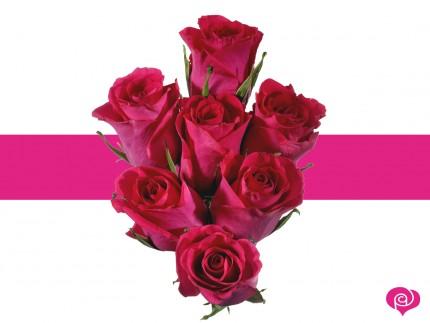 Offrir 7 roses l 39 atelier des fleurs for Offrir des roses