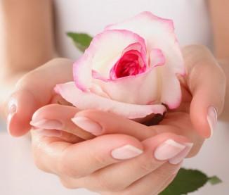 langage des fleurs pardon l 39 atelier des fleurs. Black Bedroom Furniture Sets. Home Design Ideas