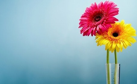 fleurs a offrir a sa copine l 39 atelier des fleurs. Black Bedroom Furniture Sets. Home Design Ideas