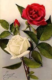 Les plus belles fleurs roses du monde - l'atelier des fleurs