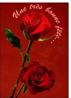Envoyer une rose l 39 atelier des fleurs for Envoyer des roses