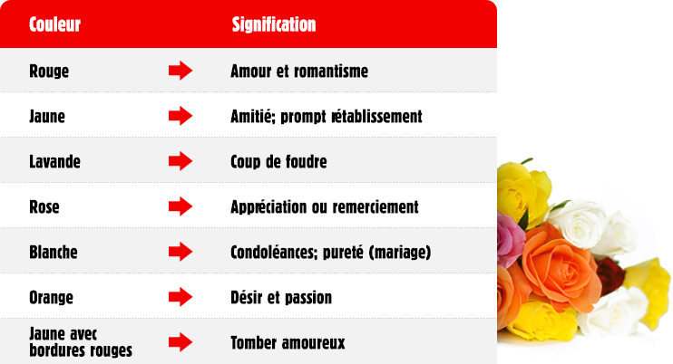 Signification des couleurs des roses l 39 atelier des fleurs - Signification nombre de roses ...