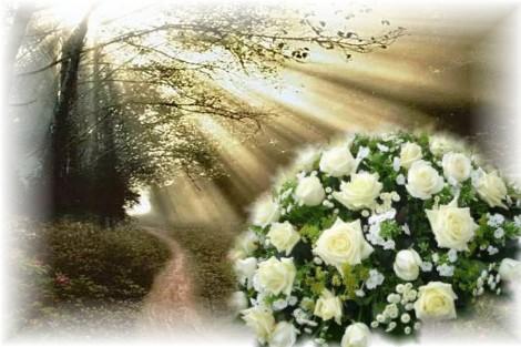Livraison fleurs deces l 39 atelier des fleurs for Fleurs a domicile livraison gratuite