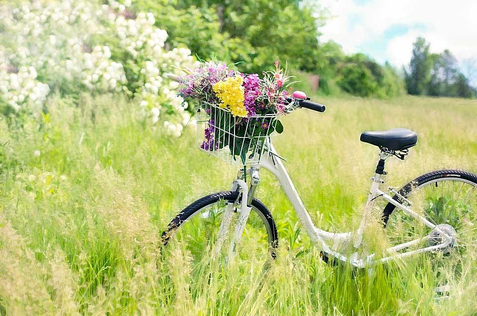 Envoi de fleurs a domicile pas cher l 39 atelier des fleurs for Envoie de fleurs a domicile pas cher
