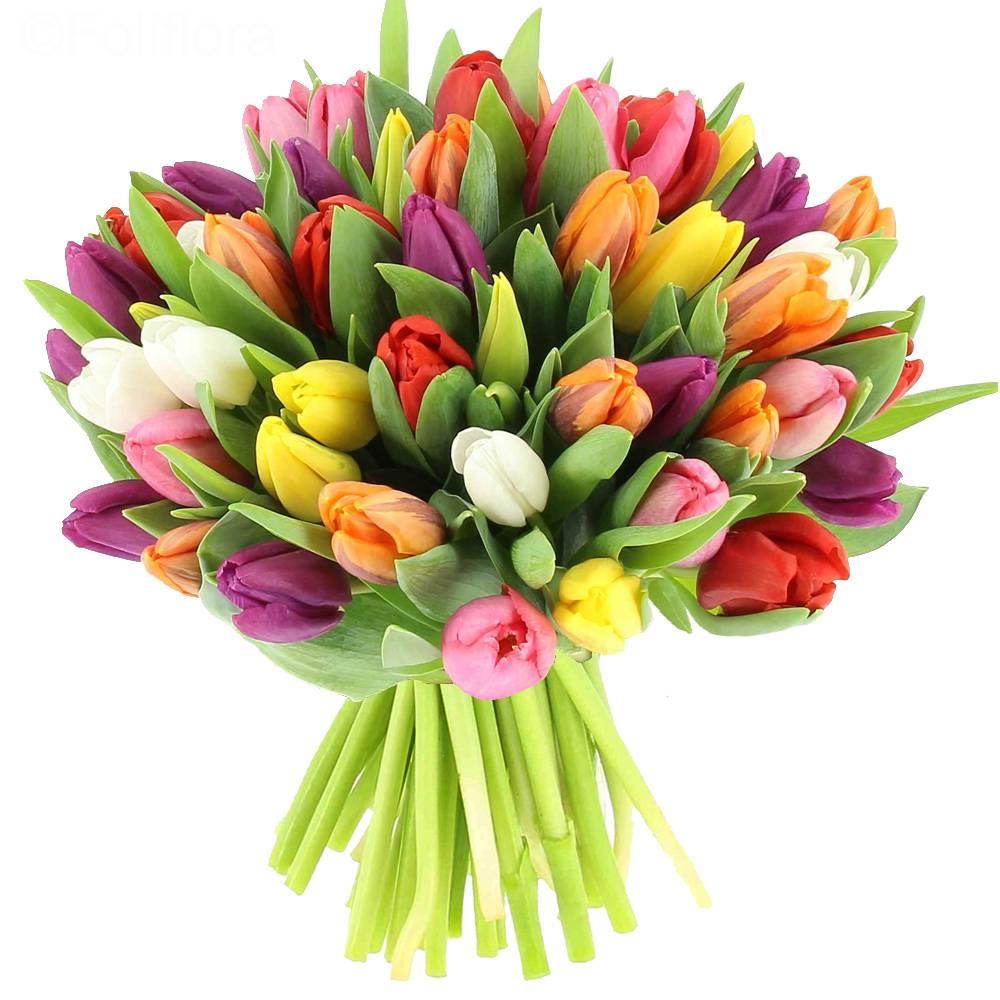 livraison fleurs demain matin l 39 atelier des fleurs. Black Bedroom Furniture Sets. Home Design Ideas