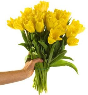 offrir une fleur l 39 atelier des fleurs. Black Bedroom Furniture Sets. Home Design Ideas