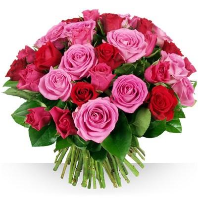 Bouquet de fleurs livraison pas cher l 39 atelier des fleurs for Site livraison fleurs