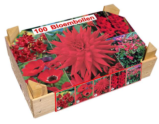 une achat fleurs en gros ici l 39 atelier des fleurs. Black Bedroom Furniture Sets. Home Design Ideas