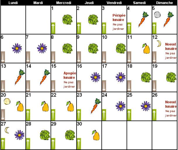 une calendrier graines et plantes ici l 39 atelier des fleurs. Black Bedroom Furniture Sets. Home Design Ideas