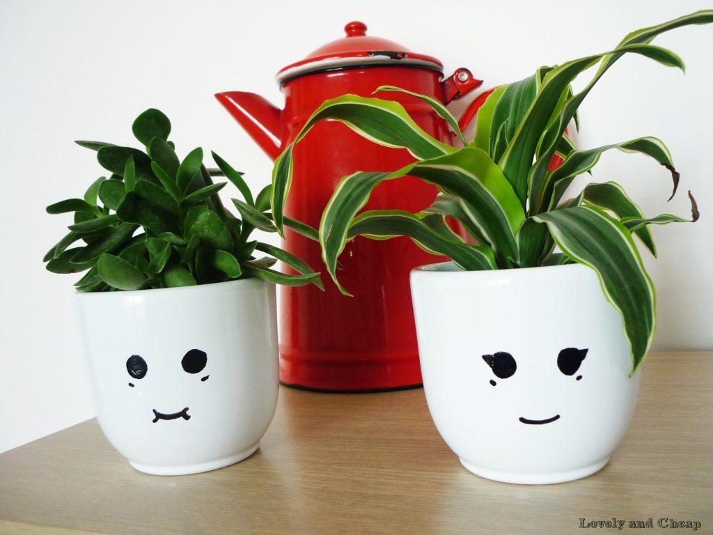 plante pour le bureau l 39 atelier des fleurs. Black Bedroom Furniture Sets. Home Design Ideas
