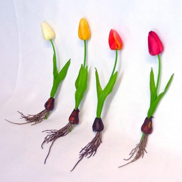 Fleur qui commence par u - l'atelier des fleurs